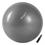 Bola De Pilates Poker Suica Gym Ball Com Bomba De Ar - 65Cm Ref 09093