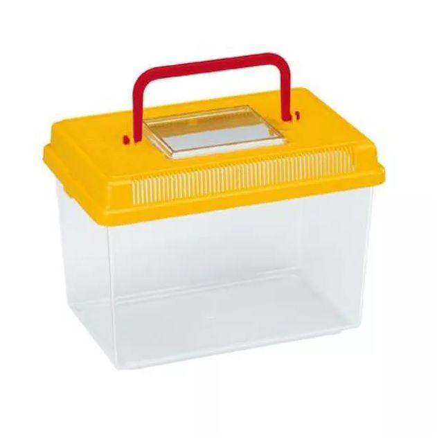 Caixa de Trasporte para peixes ornamentais