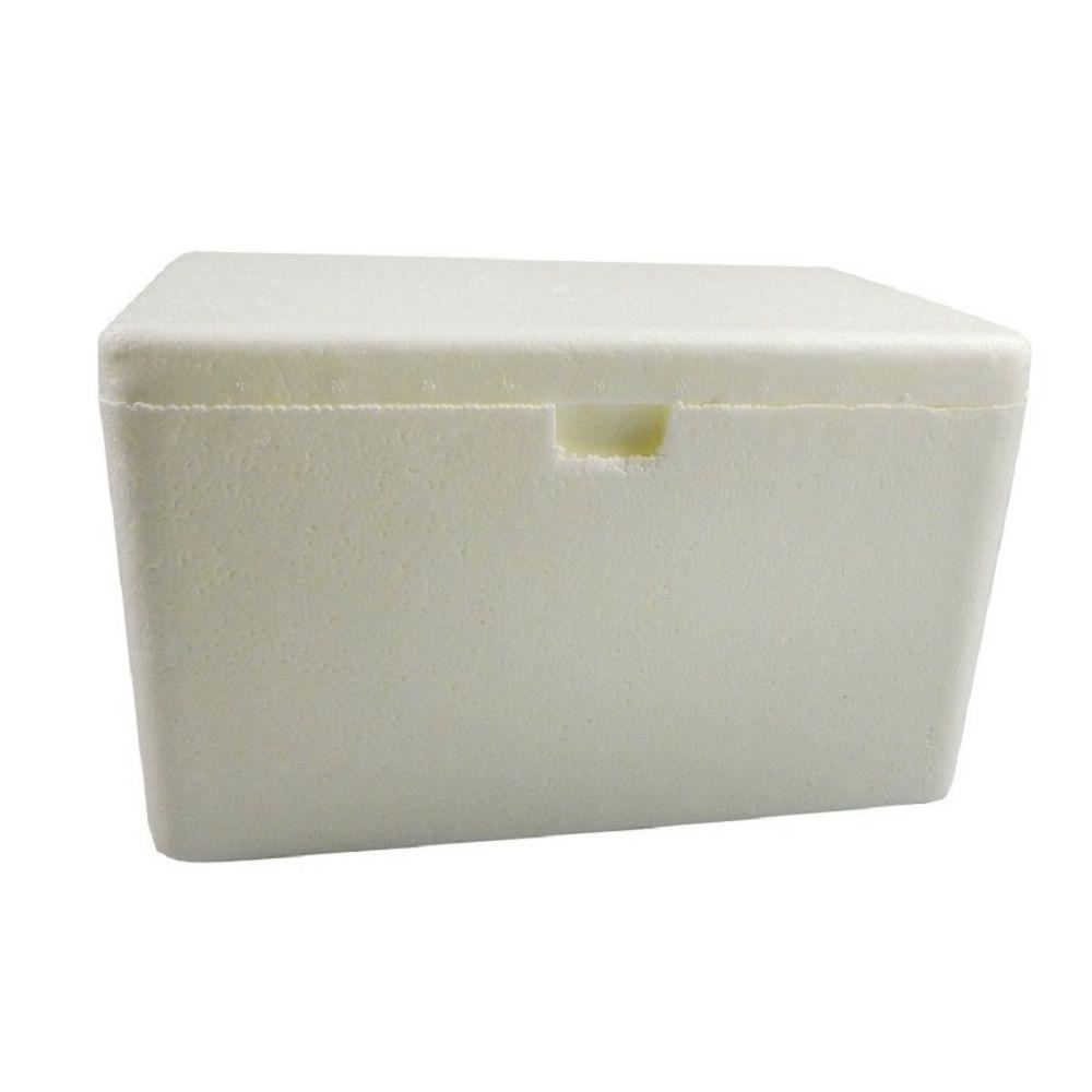 Caixa Térmica Isopor 5 Litros Fort Box