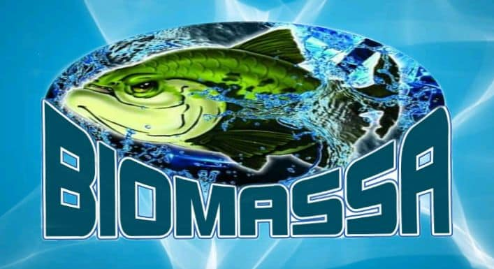 Massa Para Pesca Biomassa Redondo