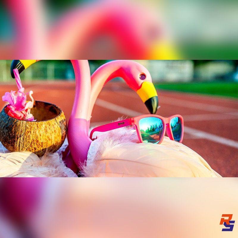 Flamingos on a Booze Cruise| GOODR
