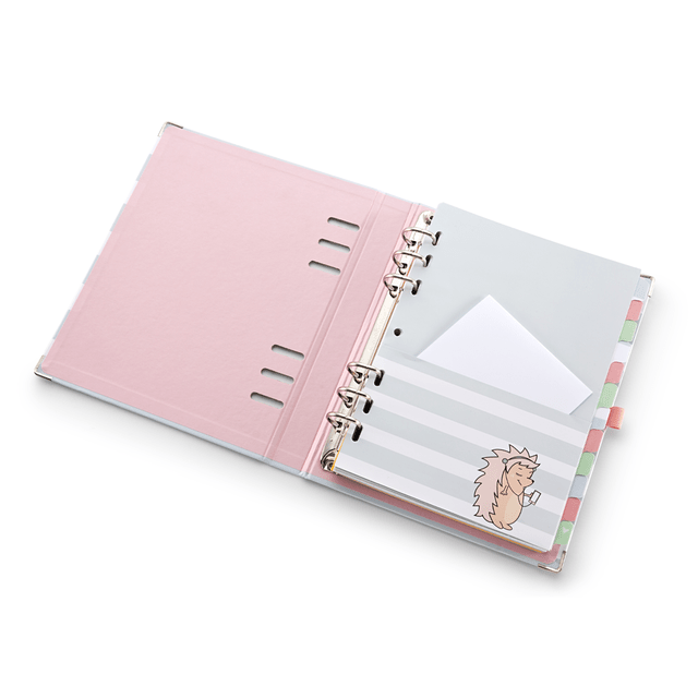 Planner / Caderno Organizador Riccio A5 LT - Ótima
