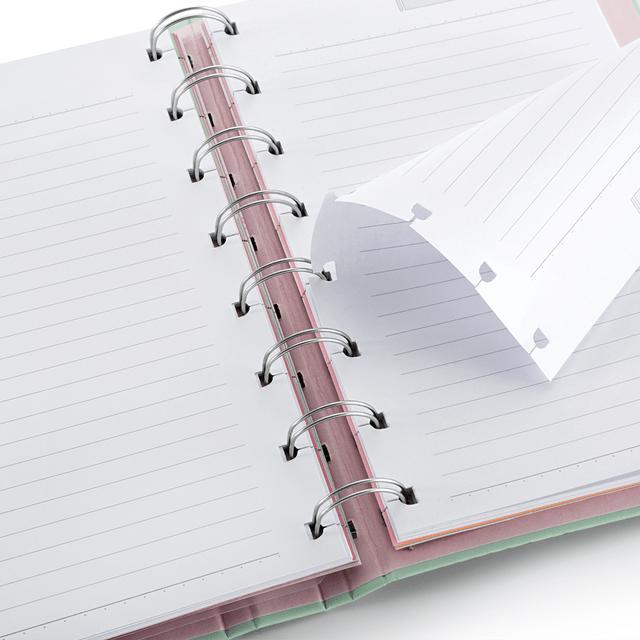 Caderno Organizador / Planner Maxi SystemFlex Riccio