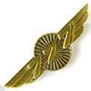 wings 777