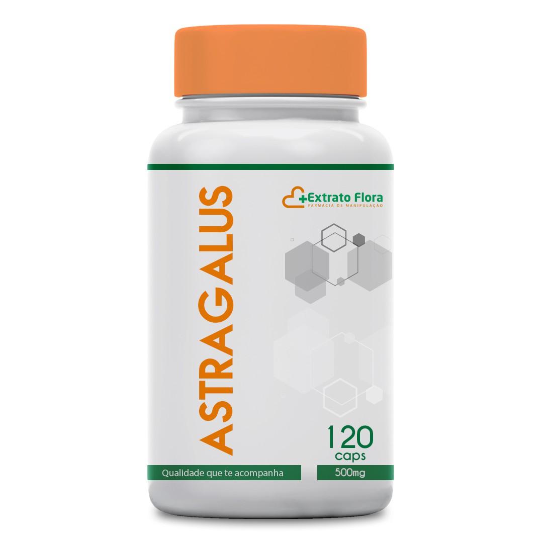 Astragalus 500mg 120 Cápsulas