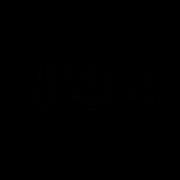 CHURRASQUEIRA ELÊTRICA GOURMET CGB2 N2 127V - BRITÂNIA