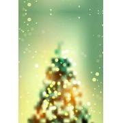 Fundo Fotográfico Decorado em Tecido Oxford - Tema Natal 1