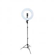 Iluminador de LED Ring Light 12 60W 35cm Diâmetro e Tripé 2m para Foto e Vídeo