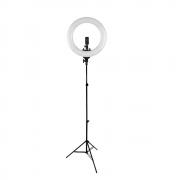 Kit Iluminador Ring Light Greika R-40B Bicolor 35cm + Tripé de Iluminação 2m