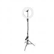 Ring Light 26cm com Tripé de Iluminação 2m para Fotos e Vídeos