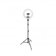 Ring Light Led 20W Iluminador 26cm com Tripé de 2m Luz para Foto e Vídeo