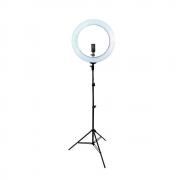 Ring Light Led RL-19 60w 48cm Diâmetro com Tripé de Iluminação 2m para Foto e Vídeo