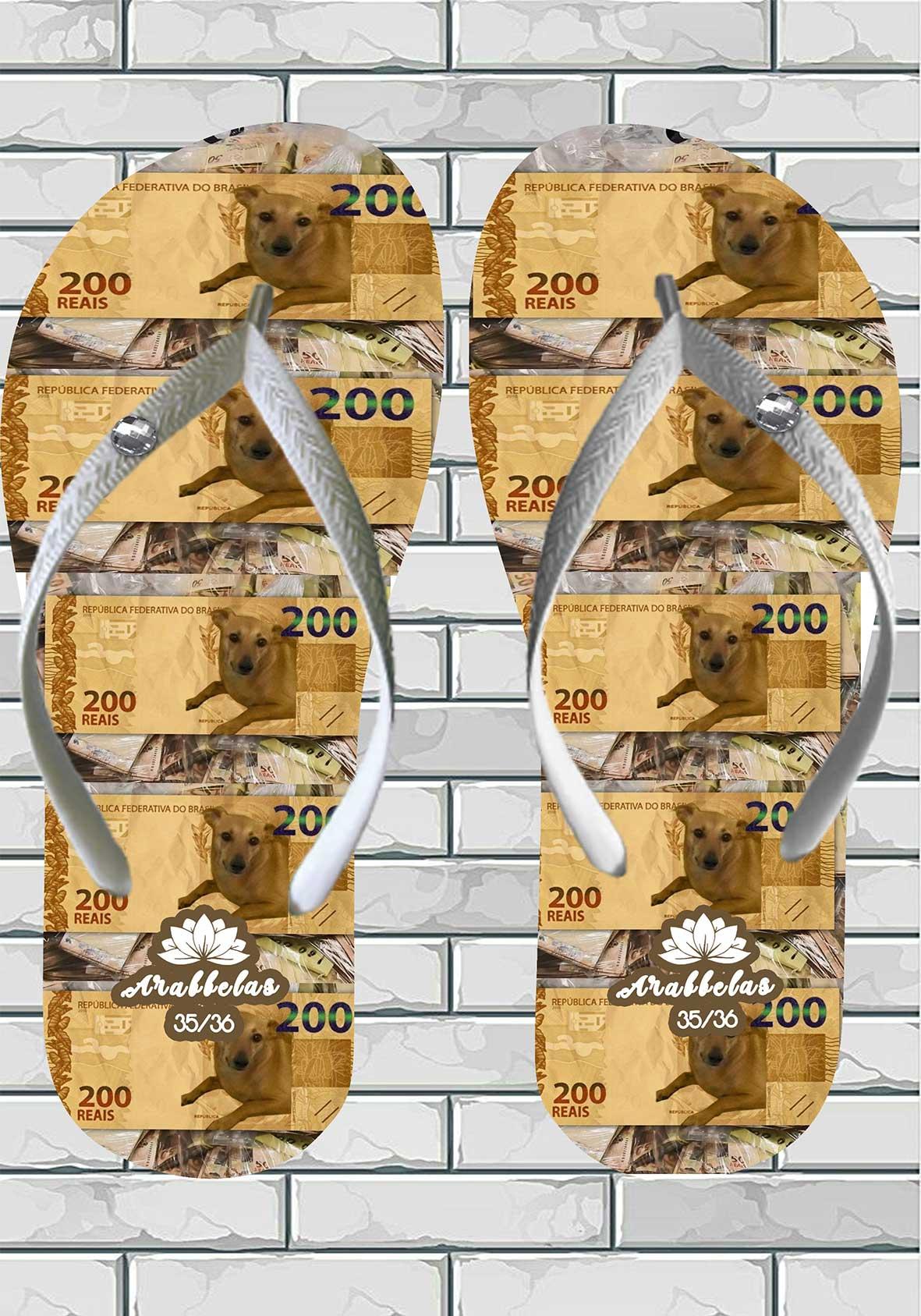 Kit 12 pares de chinelos atacado Arabbelas Money Chinelos nota de dinheiro mod. 03