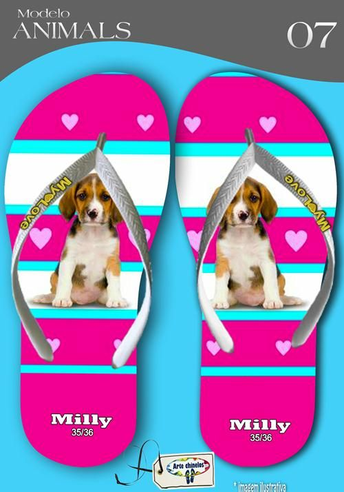 Kit com 12 pares de chinelos atacado para revenda  Milly Animals metalizada  mod.07  - Arte Chinelos Atacado