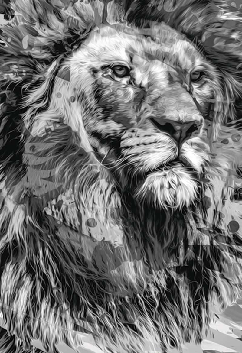 Bíblia NTLH YouVersion The Lion / P&B - Letra Normal