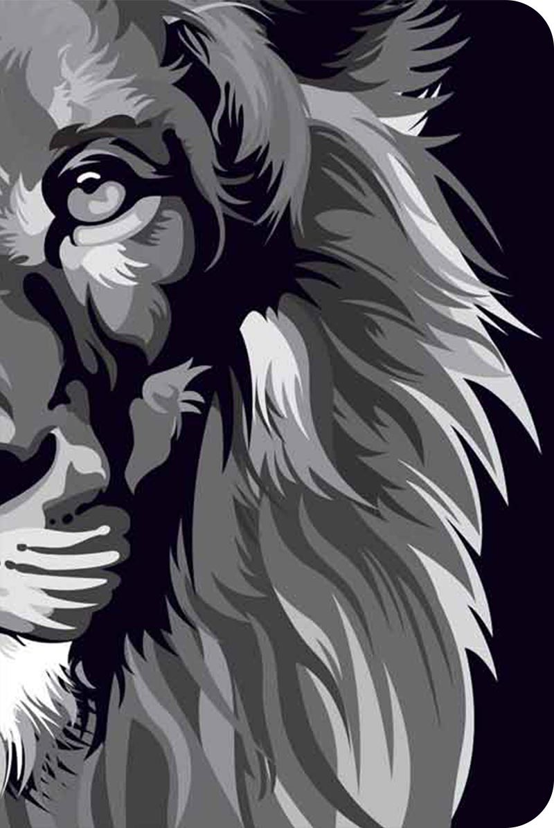 Bíblia NVT 960 Lion Colors Black & White