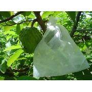 Sacos Tnt Para Proteção De Frutas No Pé 21x25 Cm 150 Peças