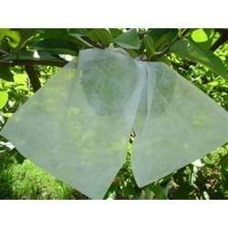 Sacos Tnt P/proteção De Frutas No Pé 10 X 15 Cm Com 50 Pçs