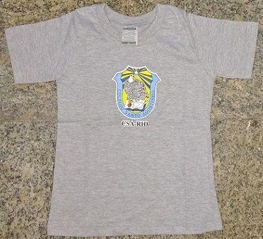 Camisa Colégio Santo Agostinho Cinza Mescla Infantil e Adulto