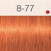 Igora Royal Coloração 60ml 8-77 LOURO CLARO COBRE EXTRA