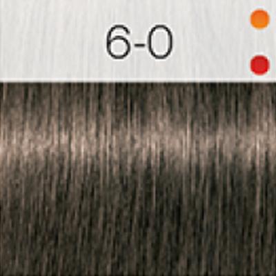 Igora Royal Coloração 60ml 6-0 LOURO ESCURO