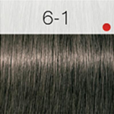 Igora Royal Coloração 60ml 6-1 LOURO CINZA ESCURO