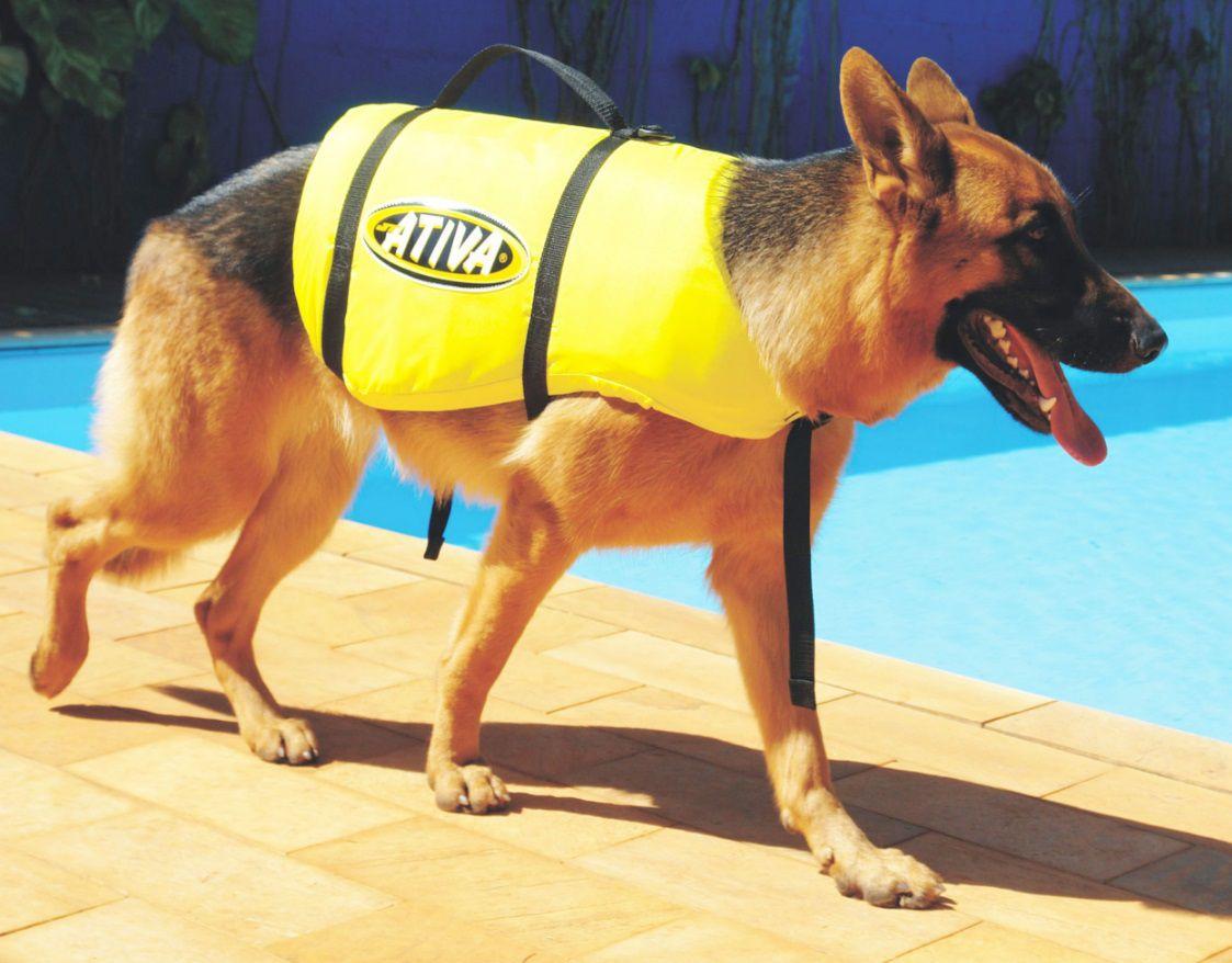 Colete Salva-Vidas para Cachorros Ativa Pet Vest Amarelo Tamanhos P M G e GG