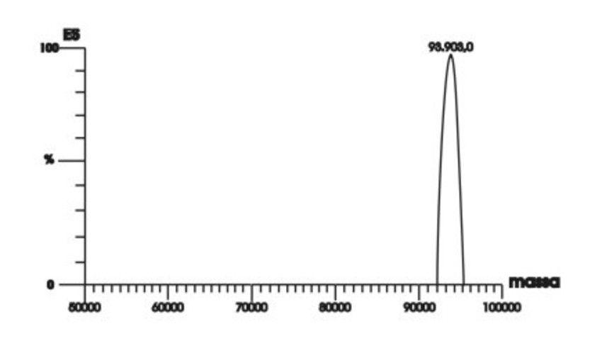 EASY TAQ DNA POLYMERASE