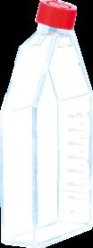 FRASCO DE CULTURA DE CÉLULAS ADERENTES (SEM FILTRO) 175CM² PCTE C/ 05 UNIDADES