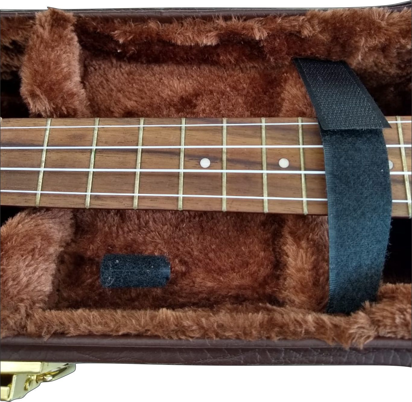 Case Térmico Para Banjo Extra Luxo Fama