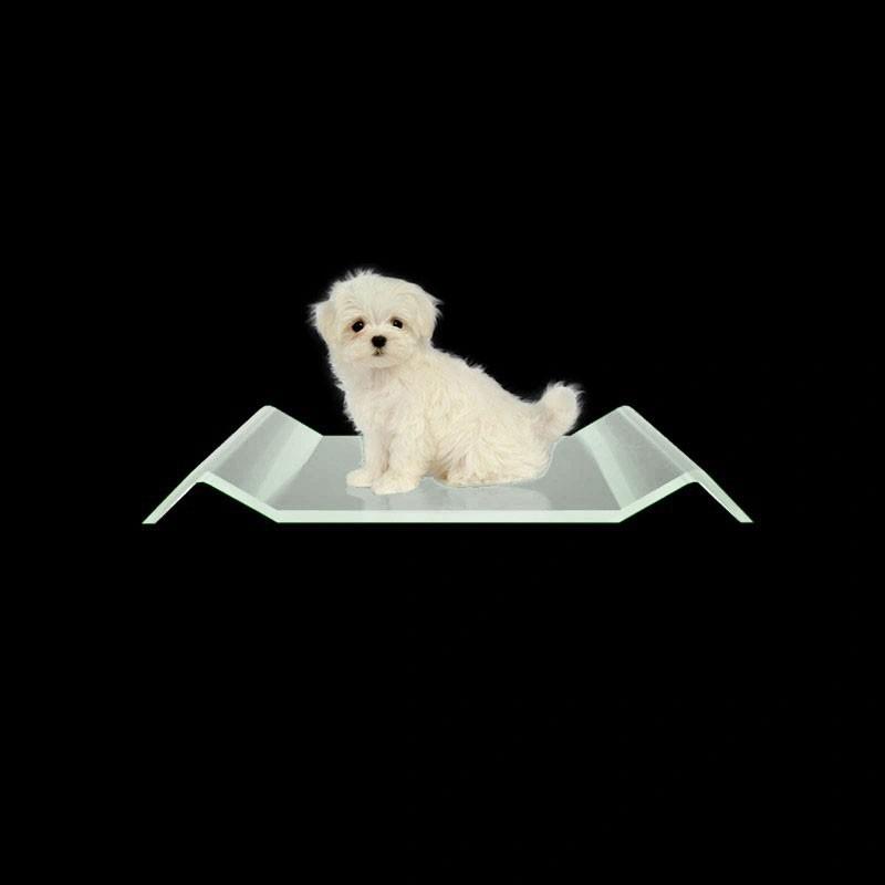 Caminha para Cachorro de Acrilico Transparente - Cama para PET luxo 4