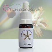 Abricó - 10 ml