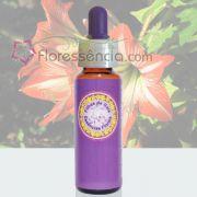 Açucena - Filhas de Gaia - 10 ml