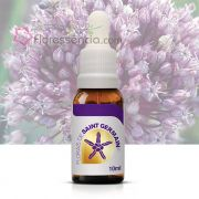 Allium - 10 ml