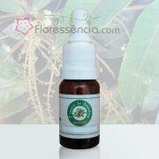 Andiroba - 10 ml