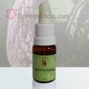 Aristoloquia - 10 ml