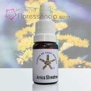 Arnica Silvestre - 10 ml