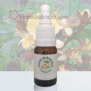 Ashra - 10 ml