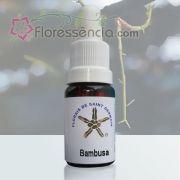 Bambusa - 10 ml