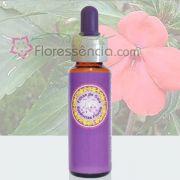 Beijinho - 10 ml