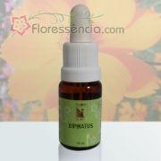 Bipinatus - 10 ml