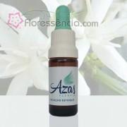 Café - Azas Florais - 10 ml