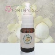 Castanheira - 10 ml