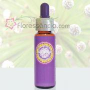 Chuveirinho - 10 ml