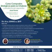 Curso PRESENCIAL COMPOSTOS SINÉRGICOS PARA OS CHAKRAS: consciência em expansão com Eliane Guerra e Tania Tristão - Azas Florais