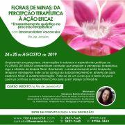 Curso PRESENCIAL FLORAIS DE MINAS: DA PERCEPÇÃO TERAPÊUTICA À AÇÃO EFICAZ com Ednamara Batista Vasconcelos