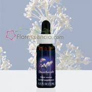 Deerbrush - 7,5 ml