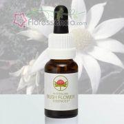 Flannel Flower - 15 ml