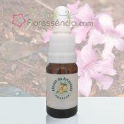 Flor Boa - 10 ml