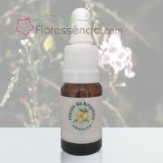 Flor de Janeiro - 10 ml